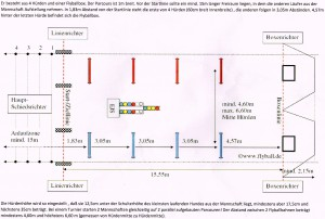 Flyball-Parcours